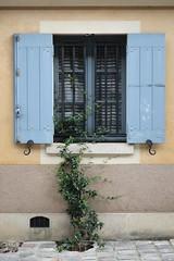 Carré à l'Avoine (just.Luc) Tags: window raam fenster fenêtre venster shutters luiken blue blu blau blauw azul bleu versailles yvelines îledefrance france frankrijk frankreich francia frança europa europe