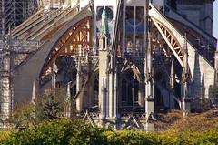 304 Paris Novembre 2019 - Notre-Dame de Paris (paspog) Tags: paris france notredame novembre november notredamedeparis cathédrale cathedral kathedral katedral