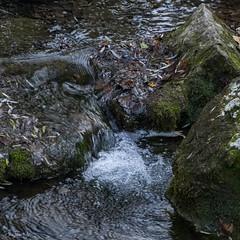 2019.12.07 La Pelegrina-100 (nature.life.street) Tags: naturaleza nature barranco rio riodulce