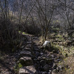 2019.12.07 La Pelegrina-73 (nature.life.street) Tags: naturaleza nature barranco rio riodulce