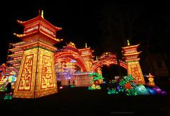 FestivalLanternes_017 (Ragnarok31) Tags: festival lanternes gaillac event evênement lumière lumières light