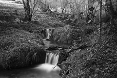 ruisseau (jpto_55) Tags: noiretblanc ruisseaudesmourarilles poselongue xt20 fuji fujifilm fujixf1855mmf284r hautegaronne france