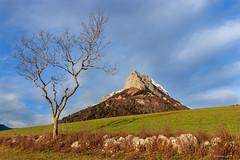 La Dent de Pleuven... et son voisin...(Savoie 12/2019) (gerardcarron) Tags: arbres automne massifbauges canoneos80d nuage nature savoie