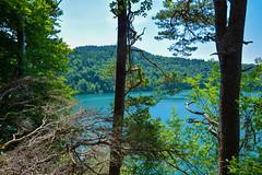 sBs_1907(vac2)_0105-2 copy (schoolartBYschoolboy) Tags: auvergne puydedome vulcan lake forest