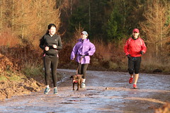 SZ6A9462 (whatsbobsaddress) Tags: 013 mallards pike parkrun 14122019 park run 14th december 2019 forest dean fod