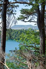 sBs_1907(vac2)_0104-2 (schoolartBYschoolboy) Tags: auvergne puydedome vulcan lake forest