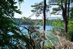 sBs_1907(vac2)_0102-2 (schoolartBYschoolboy) Tags: auvergne puydedome vulcan lake forest