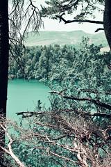 sBs_1907(vac2)_0101-2 copy (schoolartBYschoolboy) Tags: auvergne puydedome vulcan lake forest