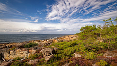NorthWest at Tyutersaari (中村巌) Tags: sea shore rock stones sky island baltic forest nature tundra bluesky freedom horizon wide nikon d5300 море берег побережье скалы небо остров балтика 海 岩 石 空 青空 島
