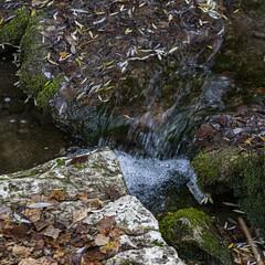 2019.12.07 La Pelegrina-98 (nature.life.street) Tags: naturaleza nature barranco rio riodulce