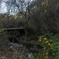 2019.12.07 La Pelegrina-96 (nature.life.street) Tags: naturaleza nature barranco rio riodulce