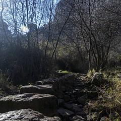 2019.12.07 La Pelegrina-72 (nature.life.street) Tags: naturaleza nature barranco rio riodulce
