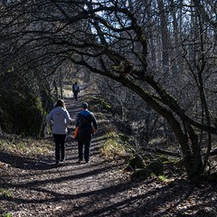 2019.12.07 La Pelegrina-64 (nature.life.street) Tags: naturaleza nature barranco rio riodulce
