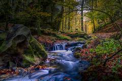 creek (Geert E) Tags: beekje bos herfst water woods creek autumn fall luxembourg