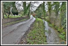 _GSD1402 (nowboy8) Tags: nikon nikond7200 hallington raithby bimble aw river flooding woods st peter togging publicfootpath