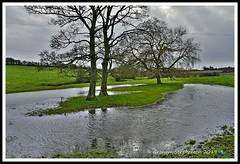 _GSD1394 (nowboy8) Tags: nikon nikond7200 hallington raithby bimble aw river flooding woods st peter togging publicfootpath