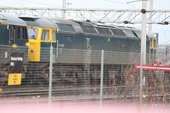 MOSSEND 47727 EDINBURGH CASTLE (johnwebb292) Tags: mossend diesel class 47 47727 edinburghcastle caledoniansleepers