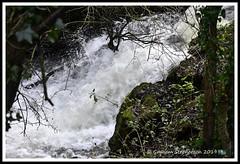 _GSD1362 (nowboy8) Tags: nikon nikond7200 hallington raithby bimble aw river flooding woods st peter togging publicfootpath