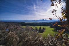 DSCF5743 (jabblonski) Tags: bayern oberland alpen view aussicht kleinhöhenrain