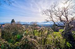 DSCF5774_5_6_7_8_9 (jabblonski) Tags: bayern oberland alpen view aussicht kleinhöhenrain