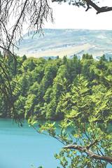 sBs_1907(vac2)_0103-2 copy (schoolartBYschoolboy) Tags: auvergne puydedome vulcan lake forest