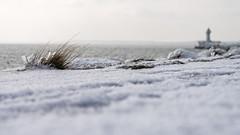 Cold (volkers100) Tags: deutschland mecklenburgvorpommern rügen sassnitz winter germany balticsea lighthouse snow ice