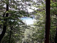 20190720_143232-2 (schoolartBYschoolboy) Tags: auvergne puydedome vulcan lake forest