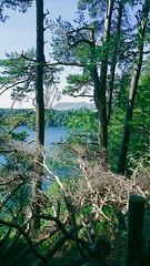 IMG_20190720_142728045-2 (schoolartBYschoolboy) Tags: auvergne puydedome vulcan lake forest