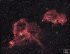 The Heart and Soul Nebula Mosaic (The Dark Side Observatory) Tags: tomwildoner night deepsky space williamsoptics telescope apo asi071mcpro zwo astronomy astrophotography science deepspace pennsylvania observatory earthskyscience redcat ic1805 ic1848 heartnebula soulnebula heartandsoulnebula november 2019 astrometrydotnet:id=nova3808518 astrometrydotnet:status=solved