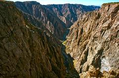 Black Canyon (SkunkJunkie) Tags: colorado canyon blackcanyon river trees nature wildlife