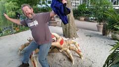 Got Crabs? (donXfive) Tags: year places copenhagen tivoligardens 2015 july month denmark