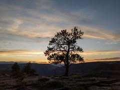 Flaming Gorge National Recreational Area (RuggyBearLA) Tags: us unitedstates ut utah flaminggorge redcanyon sheepcreekgeological landscape geology canyon river nps findyourparkdutchjohnutahunitedstatesofamerica