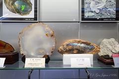 地質標本館 (GenJapan1986) Tags: 2019 つくば市 地質標本館 茨城県 日本 japan ricohgriii museum ibaraki