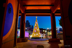 Christmas in Korea (JTeale) Tags: landscape asia travel teale christmastree southkorea canon tourism christmas korea