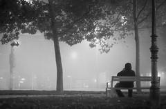 Foggy Night (CoolMcFlash) Tags: fog foggy night vienna street streetphotography person bw blackandwhite blackwhite bnw fujifilm xt2 winter cold alone sitting bench nebel nacht wien strase sw schwarzweis alleine kalt sitzen bank fotografie photography xf35mmf14 r lonelyness einsamkeit