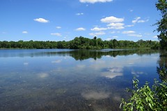 Top and Bottom (trvimagez) Tags: lake water reflection nature naturephotography outside trees