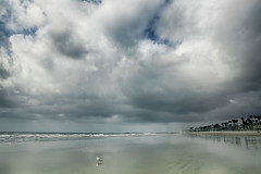 Beyond (lfeng1014) Tags: beyond beach sky seagull canon5dmarkiii ef2470mmf28liiusm landscape pacificocean ocean california usa travel lifeng newportbeach newport reflection