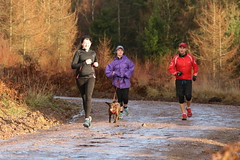 SZ6A9461 (whatsbobsaddress) Tags: 013 mallards pike parkrun 14122019 park run 14th december 2019 forest dean fod