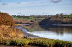 The River Tamar at Halton Quay, Cornwall (Baz Richardson) Tags: cornwall devon rivertamar haltonquay calstock berepeninsula rivers sssi aonb