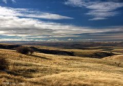 The View from Cabbage Hill, Pendleton, Oregon (Gary L. Quay) Tags: pendleton cabbagehill oregon pacificnorthwest westernusa landscape clouds sky nikon garyquay distance outside outdoors winter