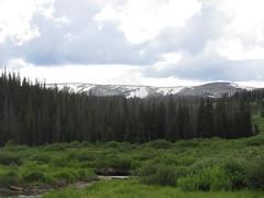 Habitat of Colias scudderi (tigerbeatlefreak) Tags: colias scudderi habitat river stream wetland butterfly wyoming
