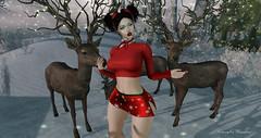 ❤ good morning guys, do you think I'm surrounded? lol (cometa shadow blog) Tags: holidayshoppingevent snow deer winter blog post catwa maitreya ysys gaia nomatch mesh bento poses