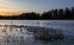 Pitkäjärvi (Antti Tassberg) Tags: talvi espoo järvi luonto landscape pitkäjärvi suomi jää finland ice lake nature scandinavia winter