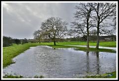 _GSD1395 (nowboy8) Tags: nikon nikond7200 hallington raithby bimble aw river flooding woods st peter togging publicfootpath