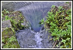 _GSD1384 (nowboy8) Tags: nikon nikond7200 hallington raithby bimble aw river flooding woods st peter togging publicfootpath