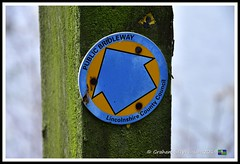 _GSD1366 (nowboy8) Tags: nikon nikond7200 hallington raithby bimble aw river flooding woods st peter togging publicfootpath