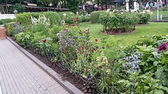 In The Garden (donXfive) Tags: year places copenhagen tivoligardens 2015 july month denmark