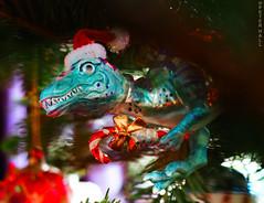 Roarrr (peterphotographic) Tags: pc140227cb2lolokitedwm olympus em5mk2 microfourthirds mft dslr ©peterhall camerabag2 walthamstow eastlondon e17 london england uk britain closeup depthoffield dof bokeh christmasdecoration christmastree christmas dinosaur bauble colour prime