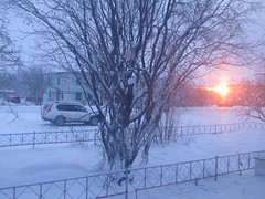 sunrise (VERUSHKA4) Tags: tree bush sky ciel sun sunrise light canon europe russia murmanskregion station car morning vue view november vera winter snow hiver neve building town ville shot road cold nord north travel blue red fence detail irondetail metallicobject season perspective branch