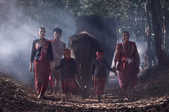 Man ,woman and elephant native of Thailand (vithuncivil) Tags: elephant thailand girl surin beautiful people young man nature culture happy lifestyle animal woman smile thai dress laos traditional wild female white fashion face travel vintage tree life grass women asian rural vietnam village walking summer portrait natural love child forest asia mammal national festive rustic poor local cambodia myanmar